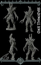 Load image into Gallery viewer, Shadowfall Lord - Wargaming Miniatures Rocket Pig Games D&D DnD Pathfinder SW Legion Warhammer Shadowfell