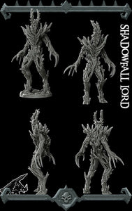 Shadowfall Lord - Wargaming Miniatures Rocket Pig Games D&D DnD Pathfinder SW Legion Warhammer Shadowfell