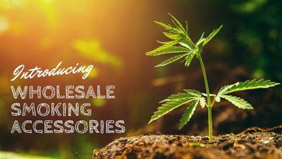 Wholesale Smoking Accessories, Dispensary Supplies for Your Smoking Arsenal