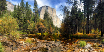 Yosemite National Park Autumn in Yosemite - Gallery-by-the-Sea Carmel