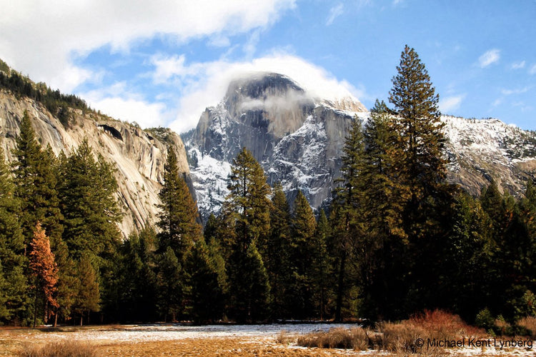 Half Dome - Gallery-by-the-Sea Carmel