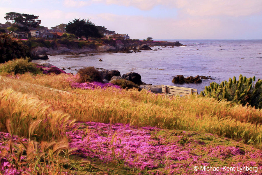 Pacific Grove Ice Plant - Gallery-by-the-Sea Carmel