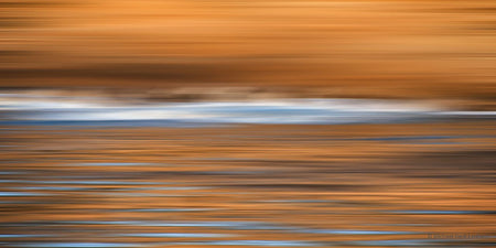 Point Lobos Abstract 14