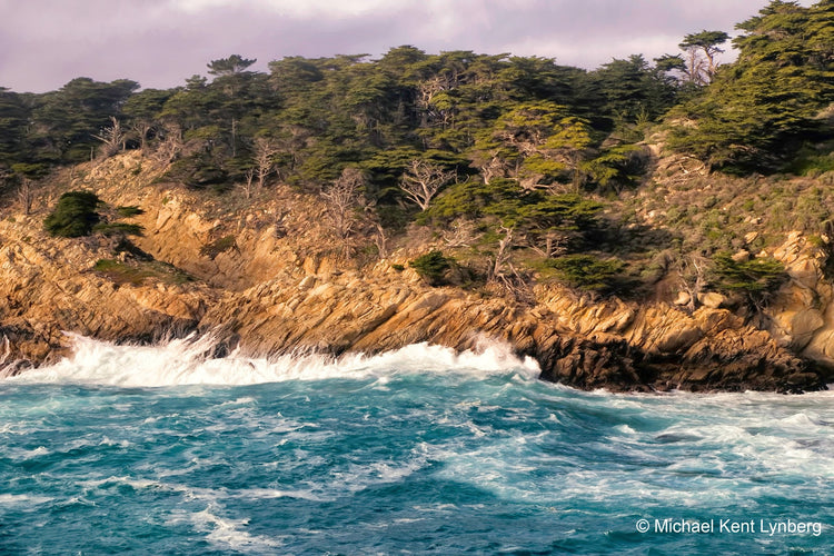 Point Lobos Vista - Gallery-by-the-Sea Carmel