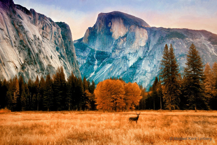 Yosemite Dawn - Gallery-by-the-Sea Carmel