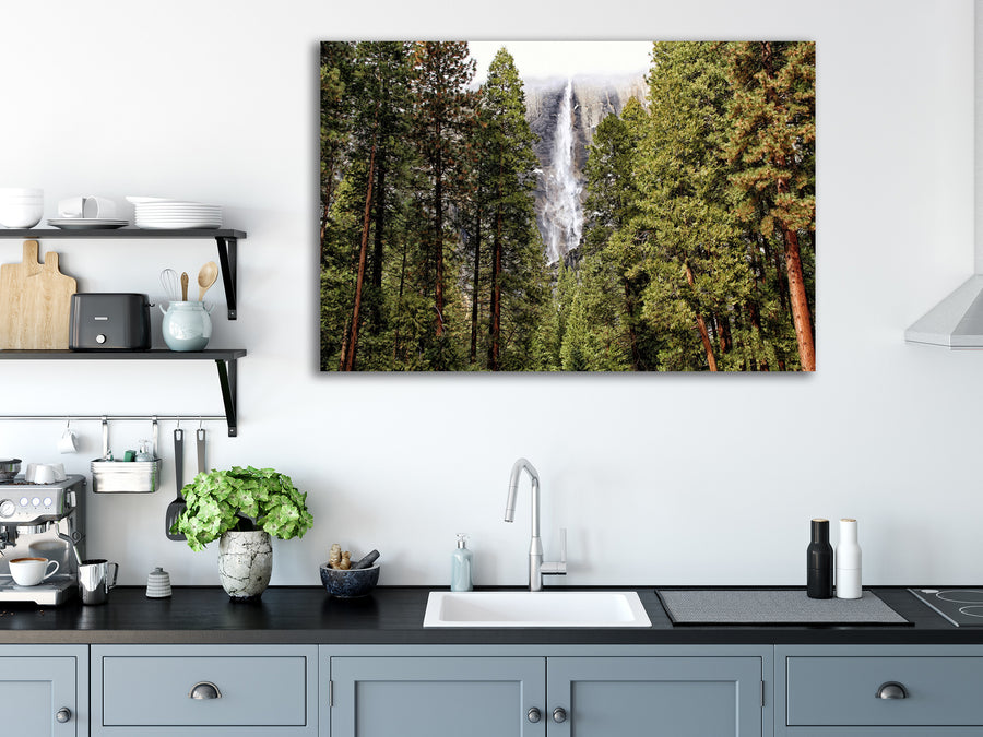 Yosemite Falls Trees - Gallery-by-the-Sea Carmel