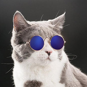 Lovely Pet Cat Glasses