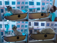 Cat Kitty Window Hammock Hanging Bed Suction Cup Mounted