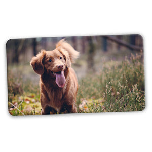 Personalised Rectangular Fridge Magnets (75mm x 40mm)