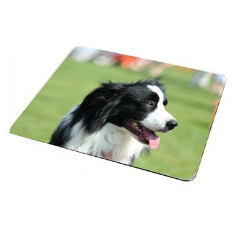 Personalised Rectangular Fridge Magnets (84mm x 53mm)