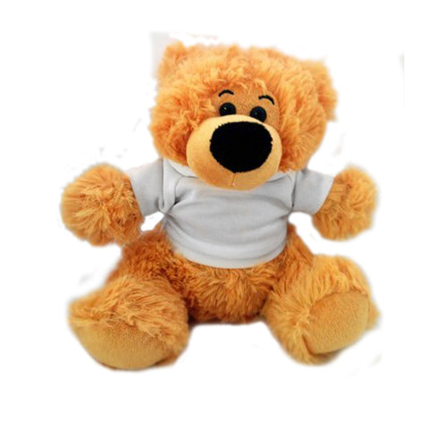 Teddy Bear with Personalised T-Shirt