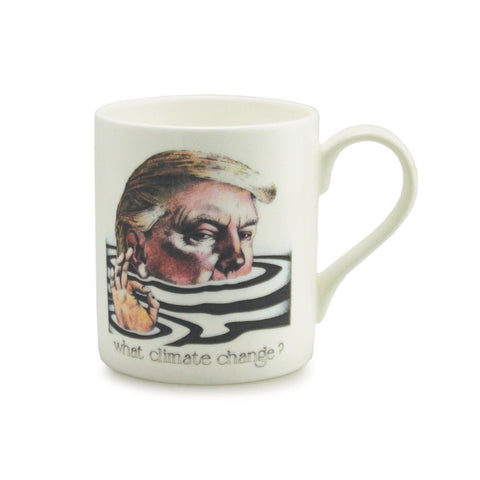 What Climate Change? China Mug