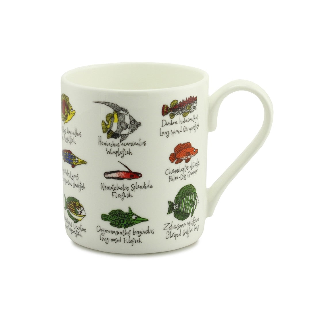 Little Fish China Mug