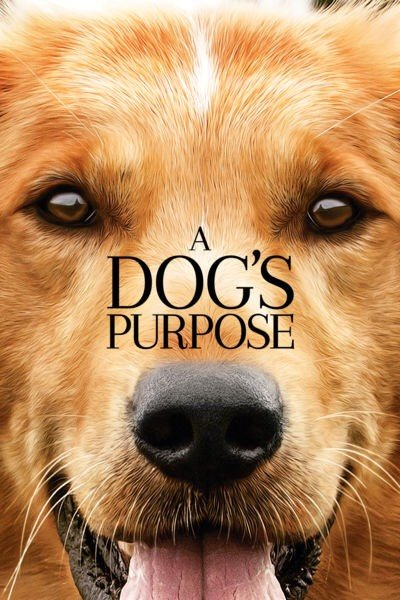 A Dog's Purpose iTunes HD redeem only