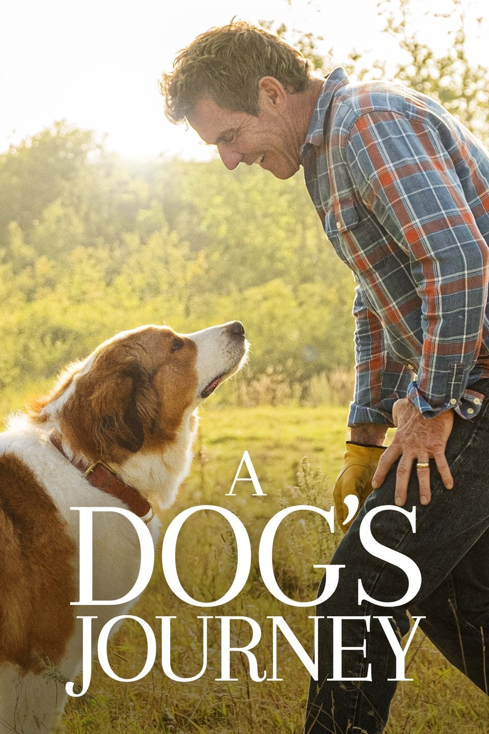 A Dog's Journey (2019) Vudu or Movies Anywhere HD code