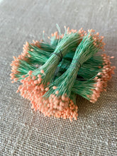 Load image into Gallery viewer, Vintage Stamens Pink and Green
