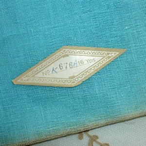Antique Robins Egg Blue Crinoline
