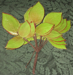 Vintage English Rose Leaves
