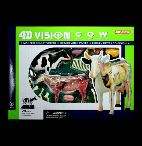 4D Vision Cow Model - PaxtonGate