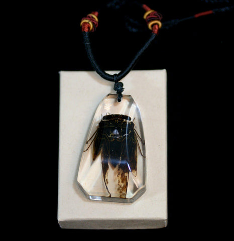 Golden Cicada Necklace-Insects-Real Insect Company-PaxtonGate