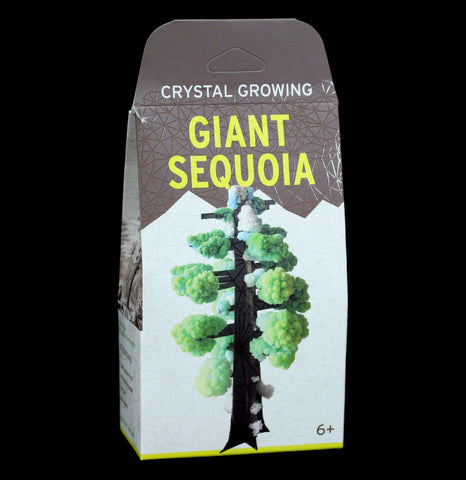 Crystal Growing Giant Sequoia-Science-Copernicus-PaxtonGate