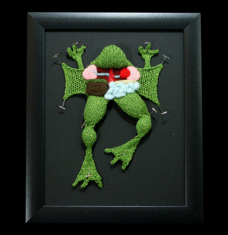 Knitted Frog Dissection-Craft-Crafty Hedgehog-PaxtonGate