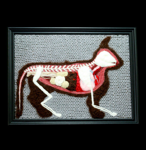 Knitted Anatomical Feline-Craft-Crafty Hedgehog-PaxtonGate