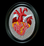 Knitted Anatomical Heart-Craft-Crafty Hedgehog-PaxtonGate