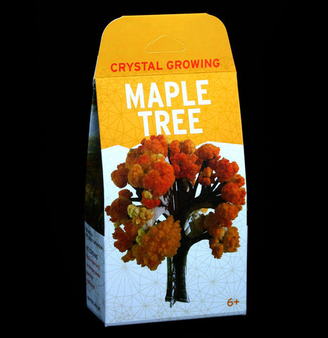Crystal Growing Maple Tree-Science-Copernicus-PaxtonGate