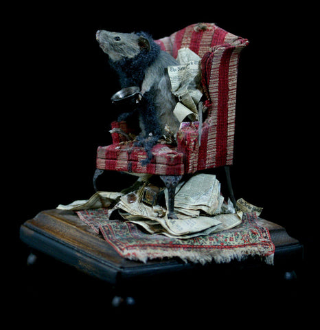 Winter Cold Taxidermy Mouse-Taxidermy-Vicki Nelson-PaxtonGate