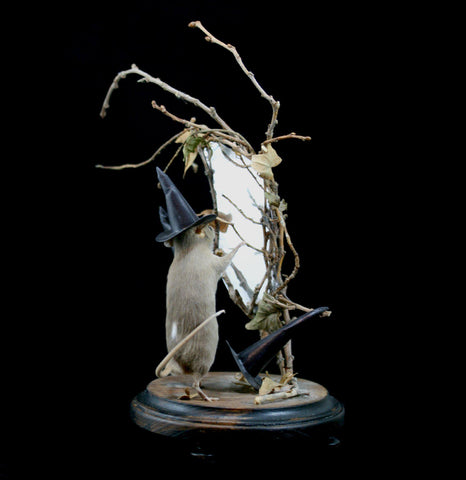 Mirror Witch Taxidermy Mouse-Taxidermy-Vicki Nelson-PaxtonGate