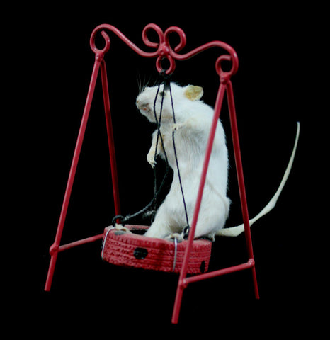Tire Swing Taxidermy Mouse-Taxidermy-Geoffrey Vassallo-PaxtonGate