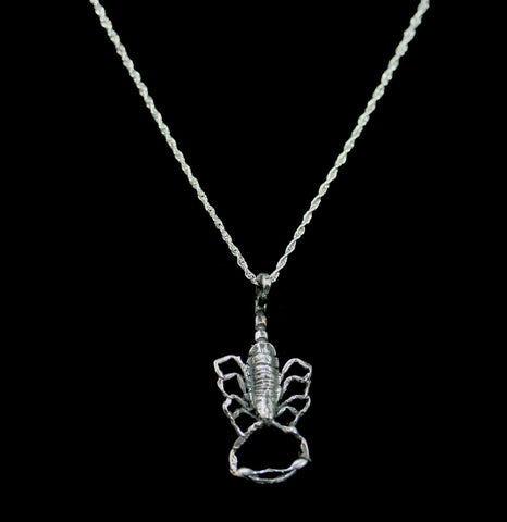 Scorpion Silver Strike Necklace-ecklaces-Hart Jewelry-PaxtonGate