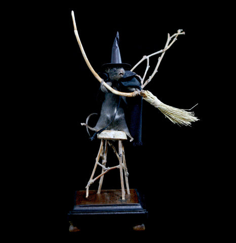 Taxidermy Witch Mouse-Taxidermy-Fool Crow-PaxtonGate