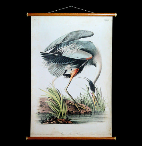 Great Blue Heron Wall Chart-2D-Thicket Sundries-PaxtonGate