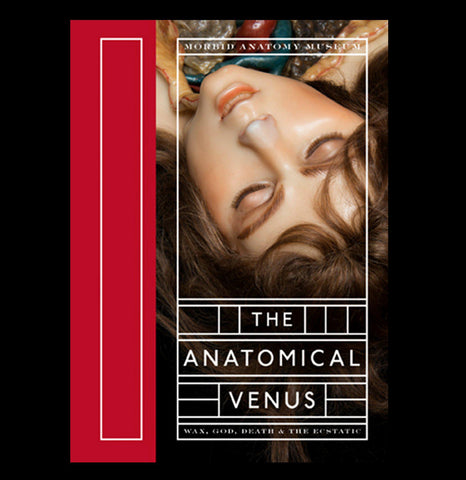 The Anatomical Venus - PaxtonGate
