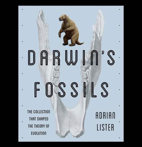 Darwin's Fossils-Books-Penguin Random House-PaxtonGate