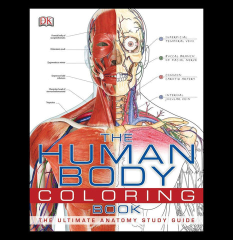 The Human Body Coloring Book-Books-Penguin Random House-PaxtonGate