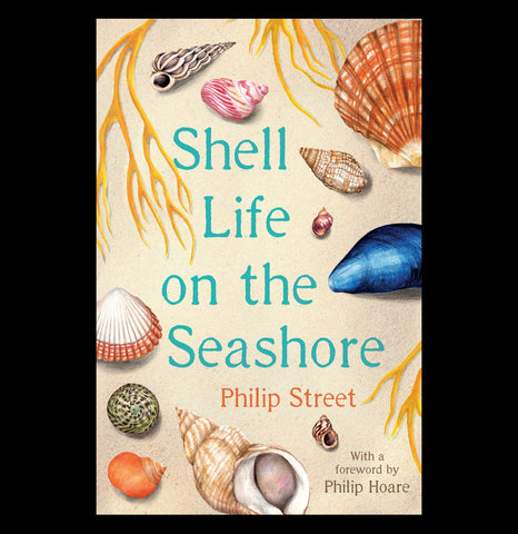 Shell Life on the Seashore-Books-Ingram Book Company-PaxtonGate