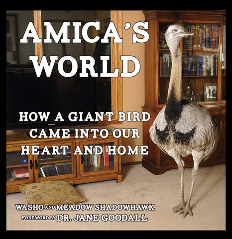 Amica's World: How a Giant Bird Came into Our Heart and Home - PaxtonGate