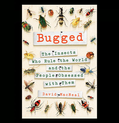 Bugged: Insects Rule the World - PaxtonGate