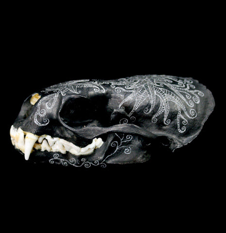 Carved Otter Skull - PaxtonGate
