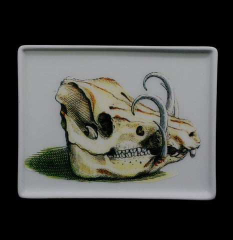 Decoupage Glass Boars Skull Tray - PaxtonGate