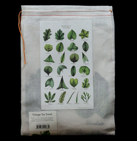 Botany Tea Towel-AccessMisc-Cavallini & Co.-PaxtonGate