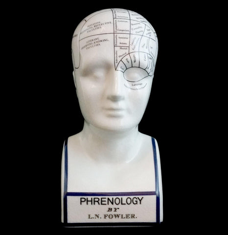 Phrenology Head - PaxtonGate
