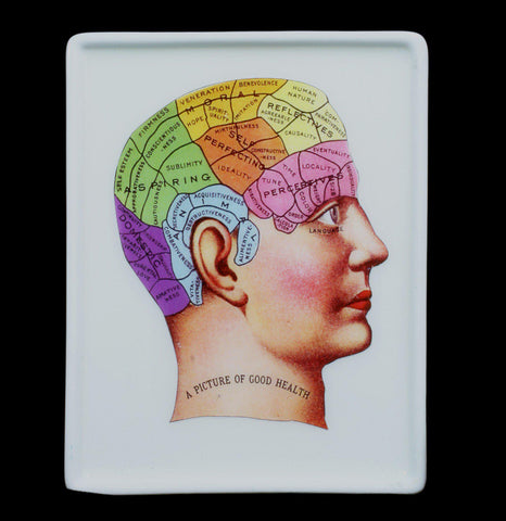 Decoupage Glass Phrenology Tray - PaxtonGate