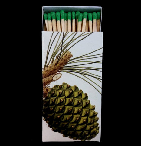 Pine Cone Matches - PaxtonGate