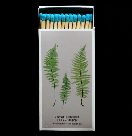Male And Female Fern Matches-AccessMisc-Hom Art-PaxtonGate