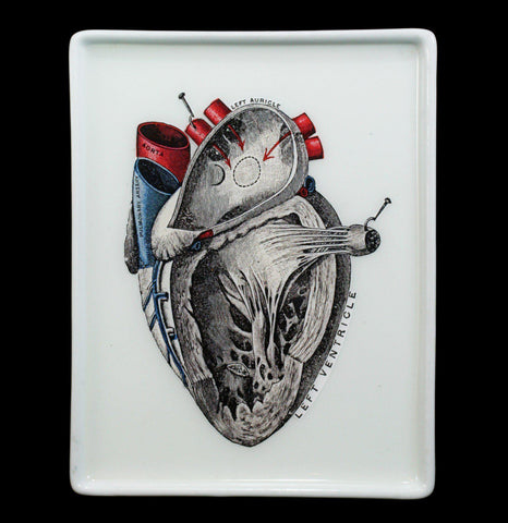 Decoupage Glass Anatomical Heart Tray - PaxtonGate