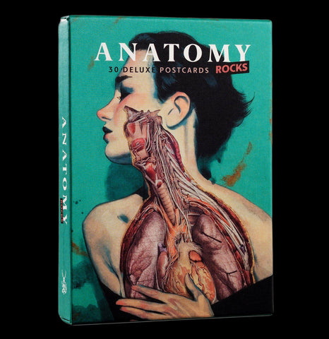 Anatomy Rocks: Postcards - PaxtonGate